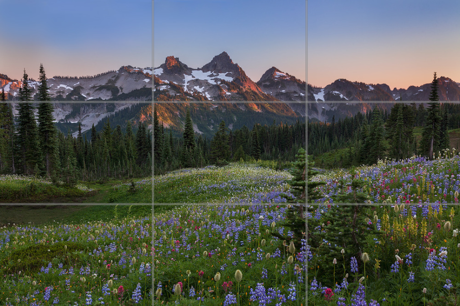 Tatoosh-Range-Wildflowers-Sarah-Marino-1024px